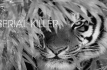 Psicologia del serial killer. Jeffrey Dahmer