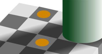 Illusioni ottiche ed enigmi della percezione