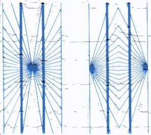 Enigmi della percezione. Linee convergenti o divergenti?